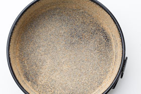 A greased 20 cm springform cake tin dusted with fine dried breadcrumbs