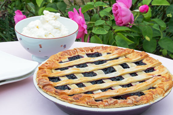 Bilberry or blueberry tart