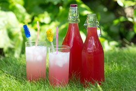 Rhubarb and soda, a perfect non-alcoholic picnic drink