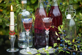 Two glasses of sloe snaps