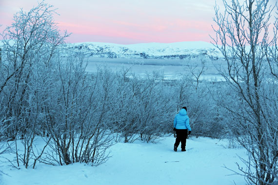 Love views walking back into Abisko on the Kungsleden
